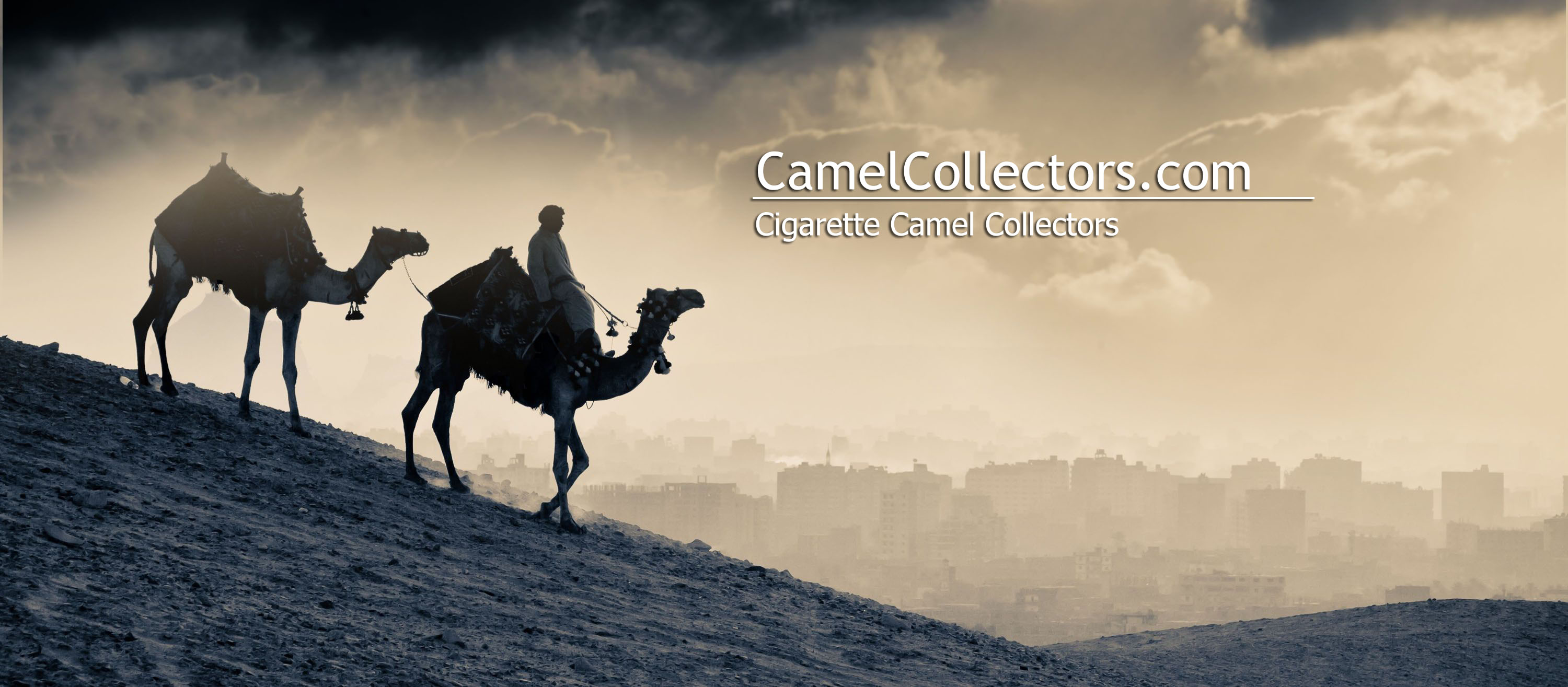 Camel Collector Packs Cigarettes Tobacco Camelcollectors Com