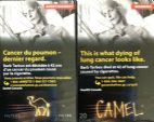CamelCollectors http://camelcollectors.com/assets/images/pack-preview/CA-006-03.jpg