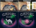CamelCollectors http://camelcollectors.com/assets/images/pack-preview/ID-002-09.jpg