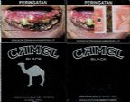 CamelCollectors http://camelcollectors.com/assets/images/pack-preview/ID-002-21.jpg
