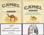 CamelCollectors http://camelcollectors.com/assets/images/pack-preview/JO-002-01.jpg
