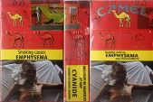 CamelCollectors http://camelcollectors.com/assets/images/pack-preview/PH-006-11.jpg