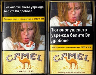 CamelCollectors https://camelcollectors.com/assets/images/pack-preview/BG-003-31-5e00b34fb0312.jpg