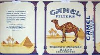 CamelCollectors https://camelcollectors.com/assets/images/pack-preview/NW-100-12.jpg