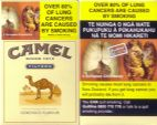 CamelCollectors https://camelcollectors.com/assets/images/pack-preview/NZ-002-01.jpg
